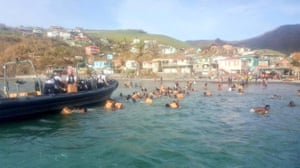 Residents of Dominica swim to a Royal Netherlands naval vessel as officers attempt to distribute emergency supplies of biscuits and water