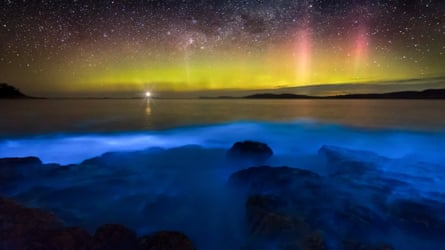 Aurora Australis or southern lights in the sky over blue bioluminescence at South Arm near Hobart.