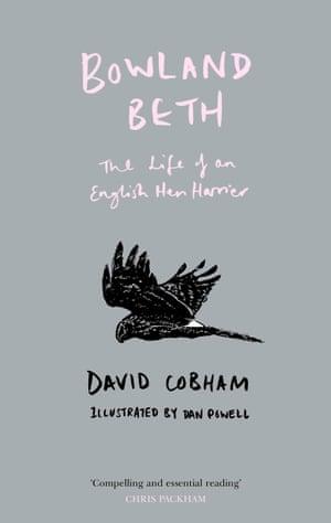 Book cover: Bowland Beth by David Cobham