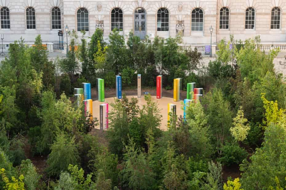 Temporary treat … the potted trees in Devlin's Forest for Change will go to worthy homes after the London Design Bienale.