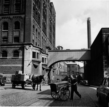A worker pushes a barrow containing malt samples at St James Gate brewery in postwar period.
