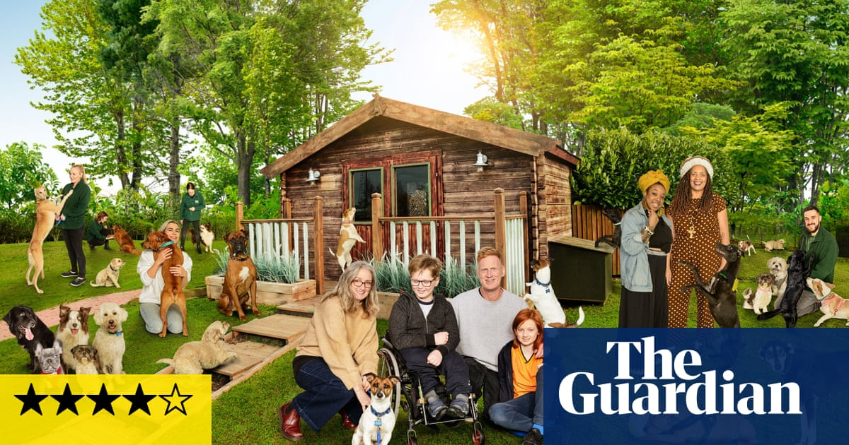 The Dog House review – a pure-hearted paean to puppy love