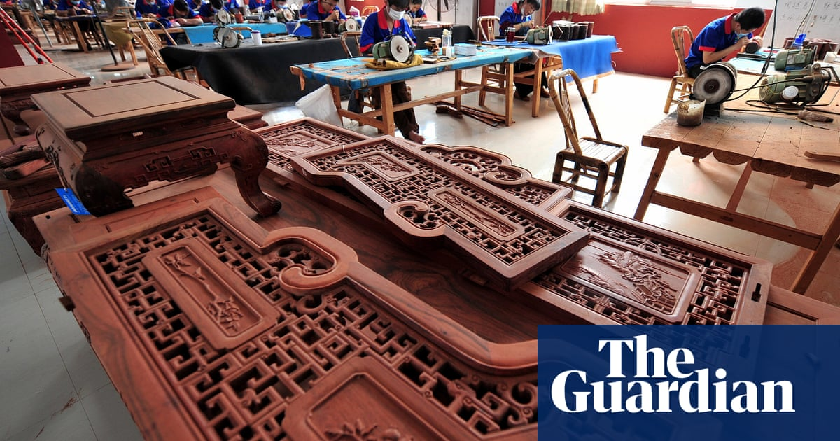 Furniture That Destroys Forests Crackdown On Rampant Trade In