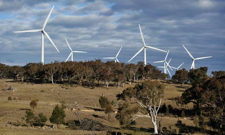 Windfarm among gumtrees