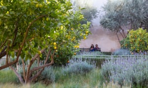 People in the Secret Garden Marrakech, with orange and lemon trees and lavender buches