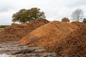 HS2 work turns trees into wood chip in Aylesbury Vale, Buckinghamshire