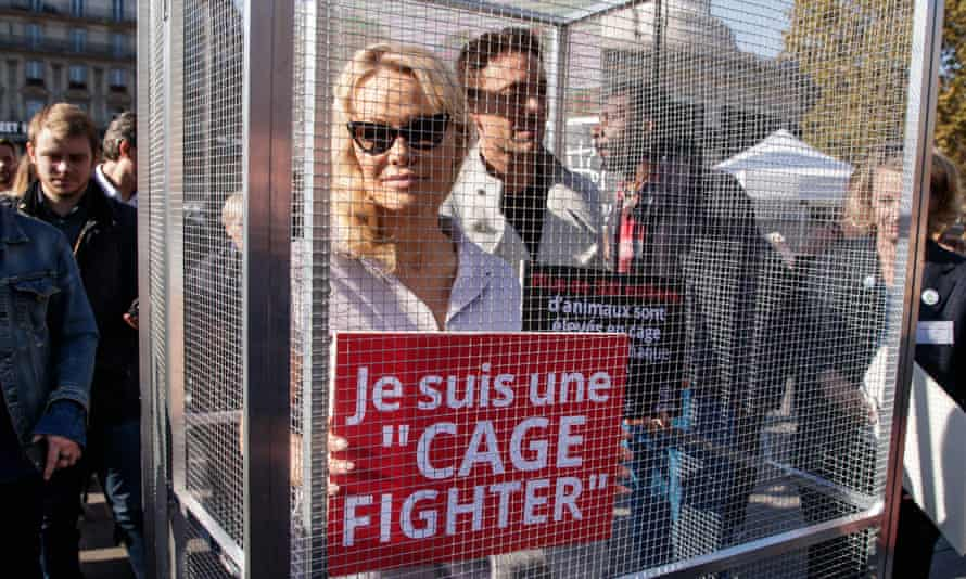 Pamela Anderson takes part in a demonstration against caged farming in Paris in October.