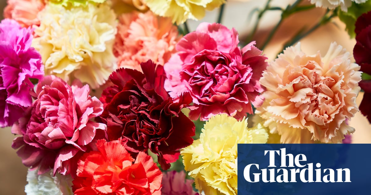 Crossword roundup: arguing about the names of flowers
