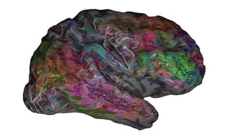 Neuroscientists create 'atlas' showing how words are organised in the brain