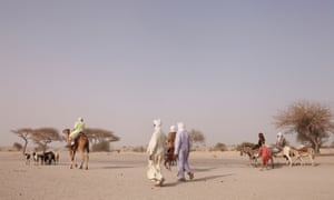 In 2012, countries across the Sahel region faced a food crisis. This ecologically fragile region is vulnerable to insufficient rainfall.