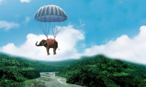 Operation Dumbo Drop has nothing to do with the film Dumbo.