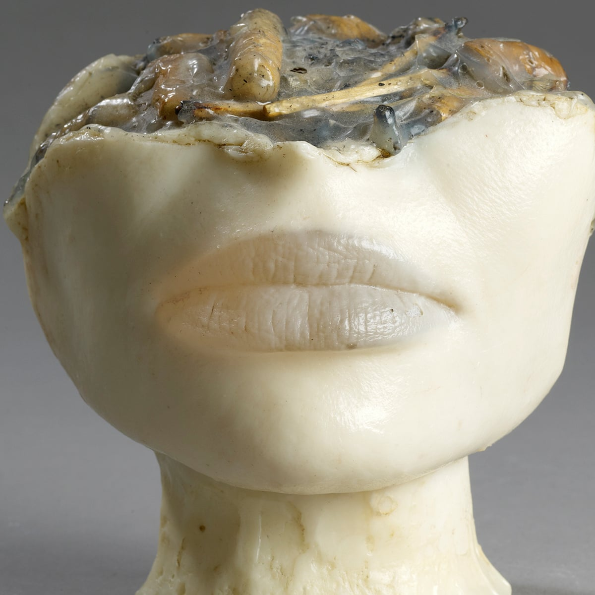 Head Ashtrays And Pin Up Body Parts Alina Szapocznikow Human Landscapes Review Art The Guardian