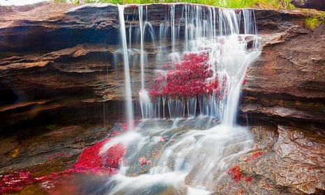Cano cristales waterfall
