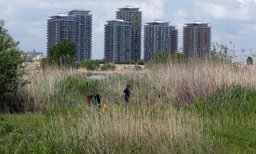 """As an ecological oasis located in the heart of Bucharest, Vacaresti Lake has been dubbed the """"Delta Behind the Blocks""""."""