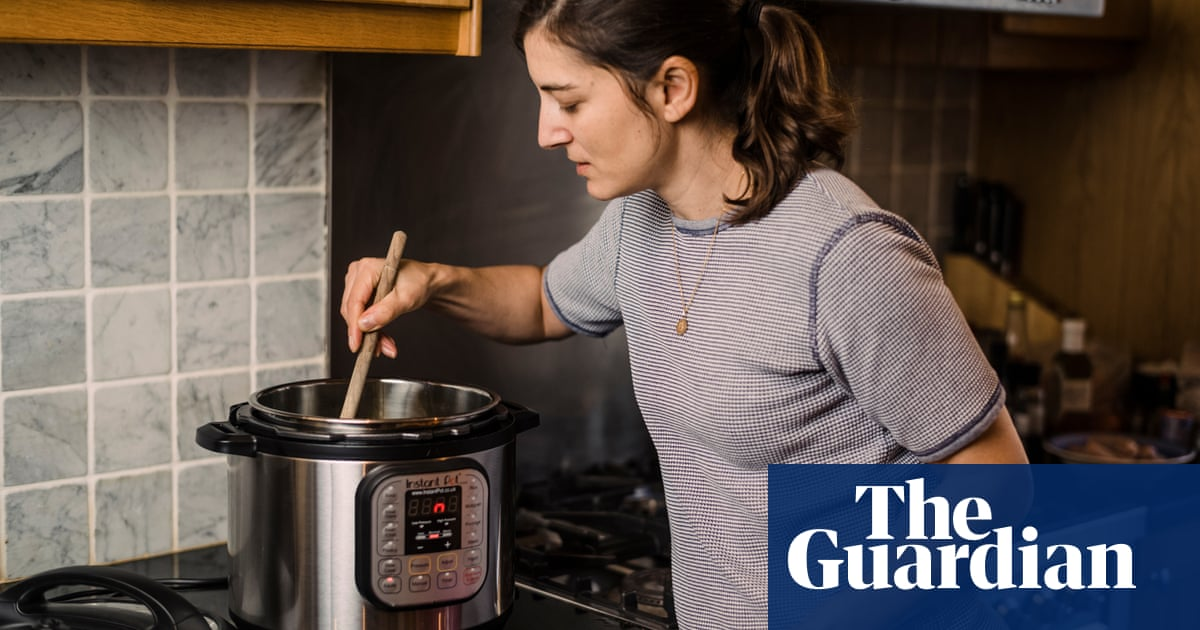 The Instant Pot inspires mass devotion  Would I join the