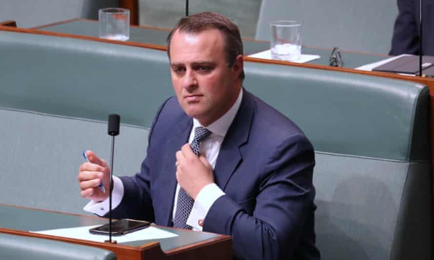 Tim Wilson in parliament last year