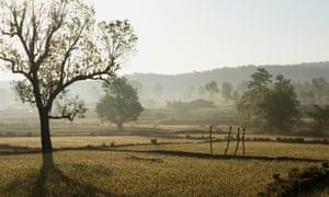 Stay calm … the unspoilt rural landscape of Chhattisgarh state.