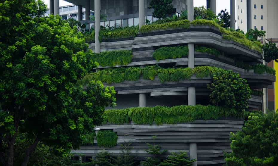 Modern skyscraper wall with green terraces, Singapore