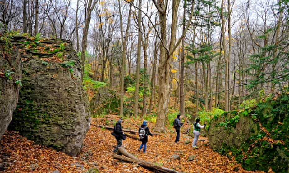 Hikers walking in the Carolinian forest in Niagara Glen conservation area.