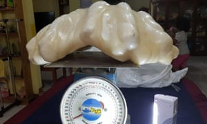The pearl, which weighs 34kg, may end up being certified as the biggest in the world.