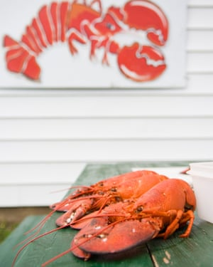 Ryer's Lobsters, Indian Harbour near Peggy's Cove.