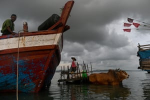 A bull cart transports goods from a boat at the Japanma jetty in Kyaukphyu.