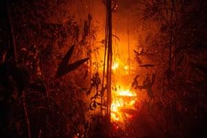 A large area of jungle burns near Porto Velho, Brazil.