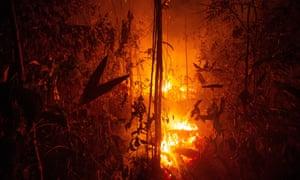 Jungle burns near Porto Velho