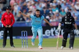 Wood celebrates bowling Neesham for 19.