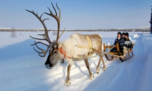 A reindeer pulling a sled across thick snow with three smiling people on it