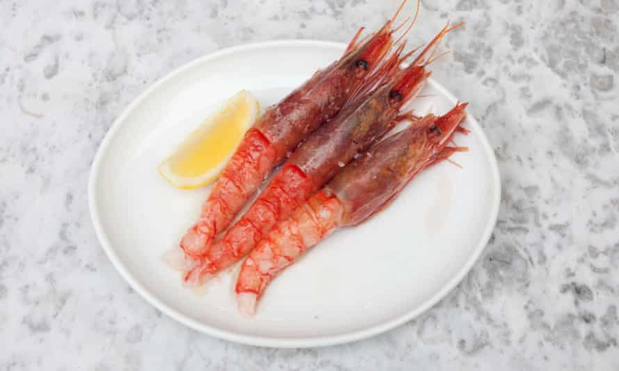 Three of the best: Sicilian red prawns, now more widely available.