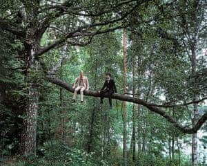 The Sacrifice of a Sacred Tree (2013)