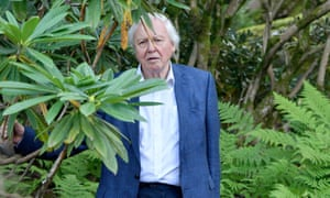 Sir David Attenborough at the Perfect World Foundations event in Gothenburg, Sweden.