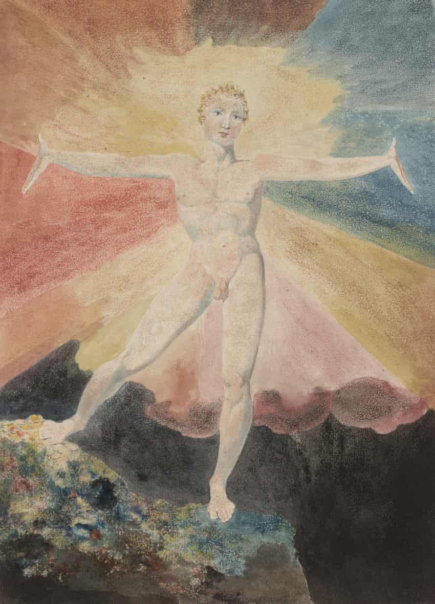 Albion Rose, c1793.