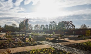 Planting at RHS Garden Bridgewater