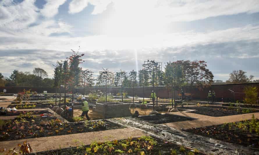 Planting at RHS Garden Bridgewater