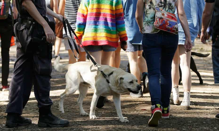 Police officers and drug detection dogs walk amongst festival goers before entering Splendour in the Grass 2016