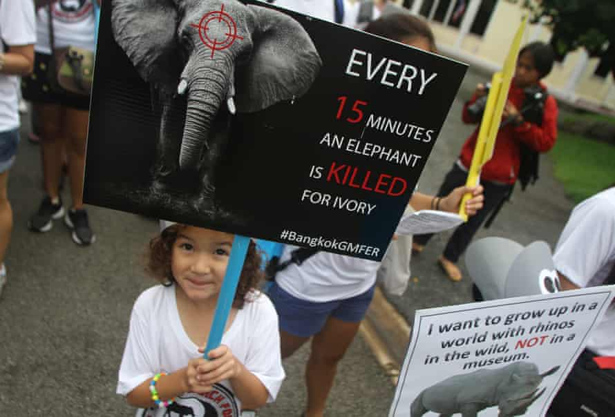 A march against the illegal ivory and rhino horn trade on September 24, 2016 in Bangkok, Thailand.