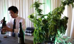 A cannabis food event in Tacoma, Washington.