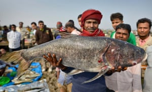 Assam, India: A villager shows his catch