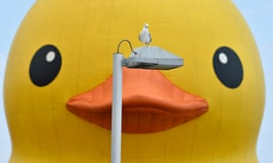 A seagull rests on a lamp post in front of a 19-metre-tall rubber duck in Toronto, Canada.