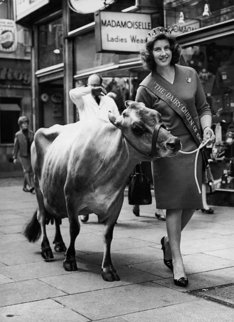Cream of the crop: Rosemarie Manister, Miss Dairy Queen of Britain 1964, parades through London with Flaxwell Bounty III, a Jersey cow, during announcement celebrations for the Dairy Festival, England.