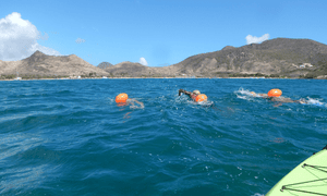 Three swimmers in the sea at St Kitts, mountains in the background