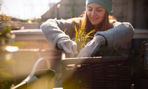 Photo of a young woman taking care of her rooftop garden on the balcony over the city, on a beautiful, sunny, autumn day
