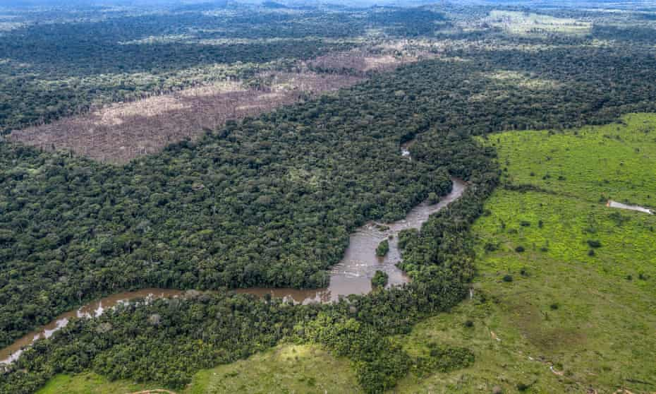 An illegal deforestation discovered by the Uru-Eu-Wau-Wau on 15 Dec ember 2019 is seen in the left of the image. In the right is seen an illegal deforestation for cattle pasture.