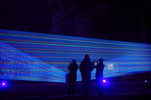 Horizontal Interference comprises colourful cords wrapped around trees