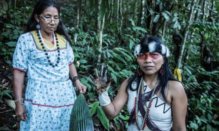 Waorani leader                 Nemonte Nenquimo shows evidence of crude oil                 contamination in the northern Ecuadorian Amazon                 rainforest.
