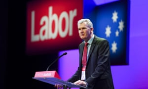 The shadow environment minister, Tony Burke, delivers his speech at Labor's national conference on Sunday.