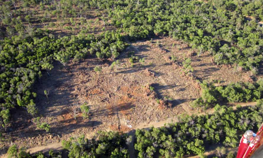 Australia is the only country in the developed world to appear on the list of world hotspots for deforestation