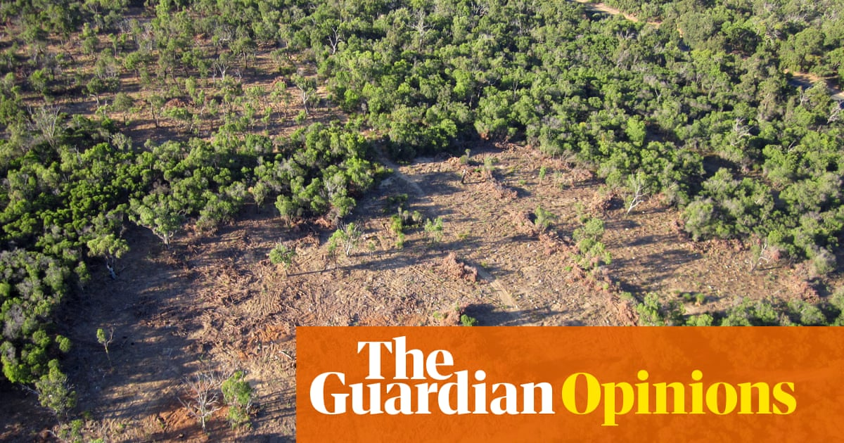 Climate-contrary Nationals, strawman arguments and rewriting Australia's Kyoto history | Graham Readfearn